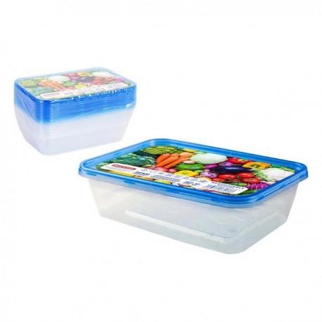 Ensemble de 10 boîtes à lunch Privilège 500 ml